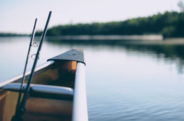 Das erste Gesetz hoffnungsloser E-Mails – warum sollen Sie angeln gehen?