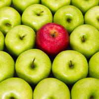 Verhaltenssegmentierung von Kontakten und Marketing Automation – wie geht das?